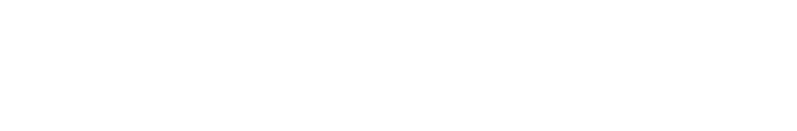 LITS Information Technology graphic